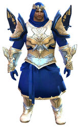 Glorious armor (light) norn male front.jpg