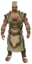 Cook's Outfit norn male front.jpg