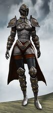 Ironclad Outfit norn female front.jpg