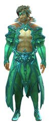 Daydreamer's Finery Outfit sylvari male front.jpg