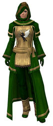 Guild Archmage armor norn female front.jpg
