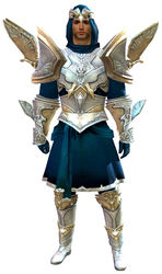 Glorious armor (light) human male front.jpg