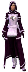 Guild Archmage armor human female front.jpg