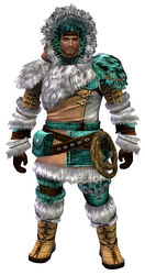 Arctic Explorer Outfit norn male front.jpg