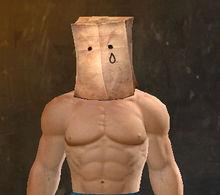 Paper-Bag Helm Skin (Sad) - Guild Wars 2 Wiki (GW2W)