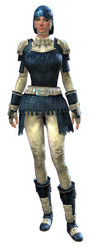 Worn Chain armor human female front.jpg