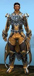 Perfected Envoy armor (light) human male front.jpg
