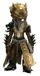 Braham's Wolfblood Outfit asura male front.jpg