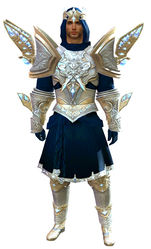 Glorious Hero's armor (light) human male front.jpg