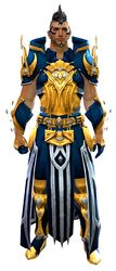 Sorcerer's armor human male front.jpg
