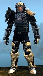 Perfected Envoy armor (medium) norn male front.jpg