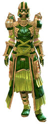 Forgeman armor (light) norn female front.jpg