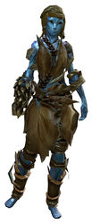 Cook's Outfit sylvari female front.jpg