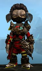 Leystone armor (medium) asura male front.jpg