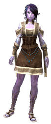 Monk's Outfit sylvari female front.jpg