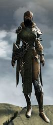 Rox's Pathfinder Outfit norn female front.jpg
