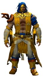 Funerary armor (light) norn male front.jpg