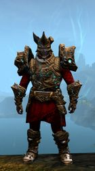 Leystone armor (heavy) norn male front.jpg