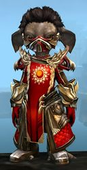 Ornate Guild armor (medium) asura male front.jpg