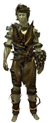 Cook's Outfit sylvari male front.jpg