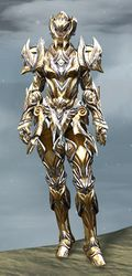 Perfected Envoy armor (heavy) norn female front.jpg