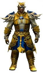 Triumphant armor (light) norn male front.jpg