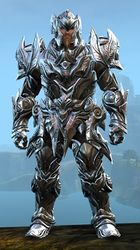 Perfected Envoy armor (heavy) norn male front.jpg