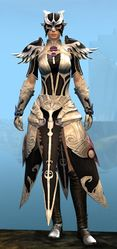 Triumphant armor (light) norn female front.jpg