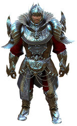 Ceremonial Plated Outfit norn male front.jpg