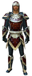 Tempered Scale armor human male front.jpg