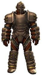 Ironclad Outfit norn male front.jpg