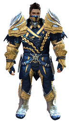 Strider's armor norn male front.jpg