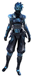 Shadow Assassin Outfit sylvari female front.jpg