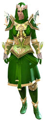 Glorious armor (light) norn female front.jpg