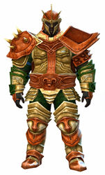 Heritage armor (heavy) norn male front.jpg