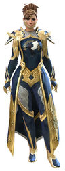 Guild Watchman armor norn female front.jpg
