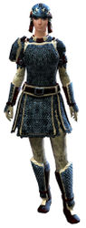 Worn Scale armor norn female front.jpg