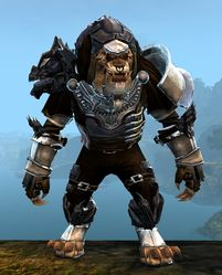 Perfected Envoy armor (medium) charr male front.jpg