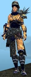 Spearmarshal's armor (heavy) norn female front.jpg