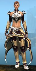 Perfected Envoy armor (light) norn female front.jpg