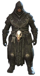 Executioner's Outfit norn male front.jpg
