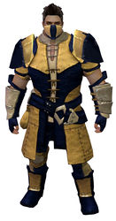 Rawhide armor norn male front.jpg