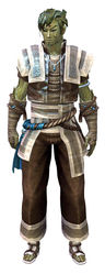 Monk's Outfit sylvari male front.jpg