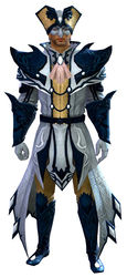 Masquerade armor human male front.jpg