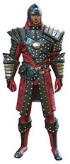 Ascalonian Sentry armor human male front.jpg