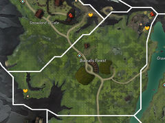 Borealis Forest map.jpg