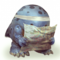 Lost quaggan icon.png