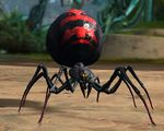 Juvenile Black Widow Spider.jpg