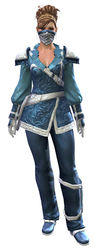Duelist armor norn female front.jpg