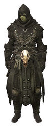 Executioner's Outfit sylvari male front.jpg